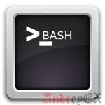 Как сохранить процессы запущенными после SSH выхода из системы в Linux