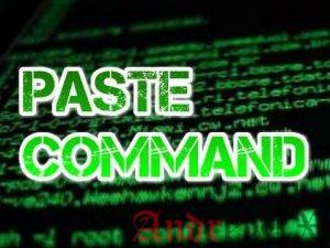7 практических примеров использования команды paste в Linux