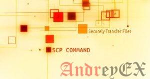 Использование команды SCP для безопасной передачи файлов в Linux