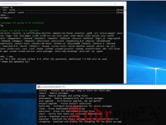 Как начать работу с WSL в Windows 10