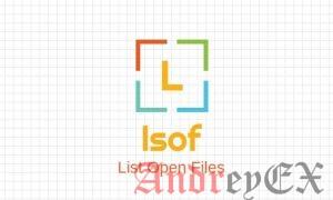 7 примеров команды lsof в Linux