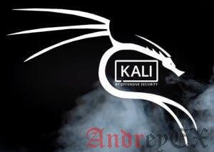 Как обновить Kali Linux с помощью одной команды