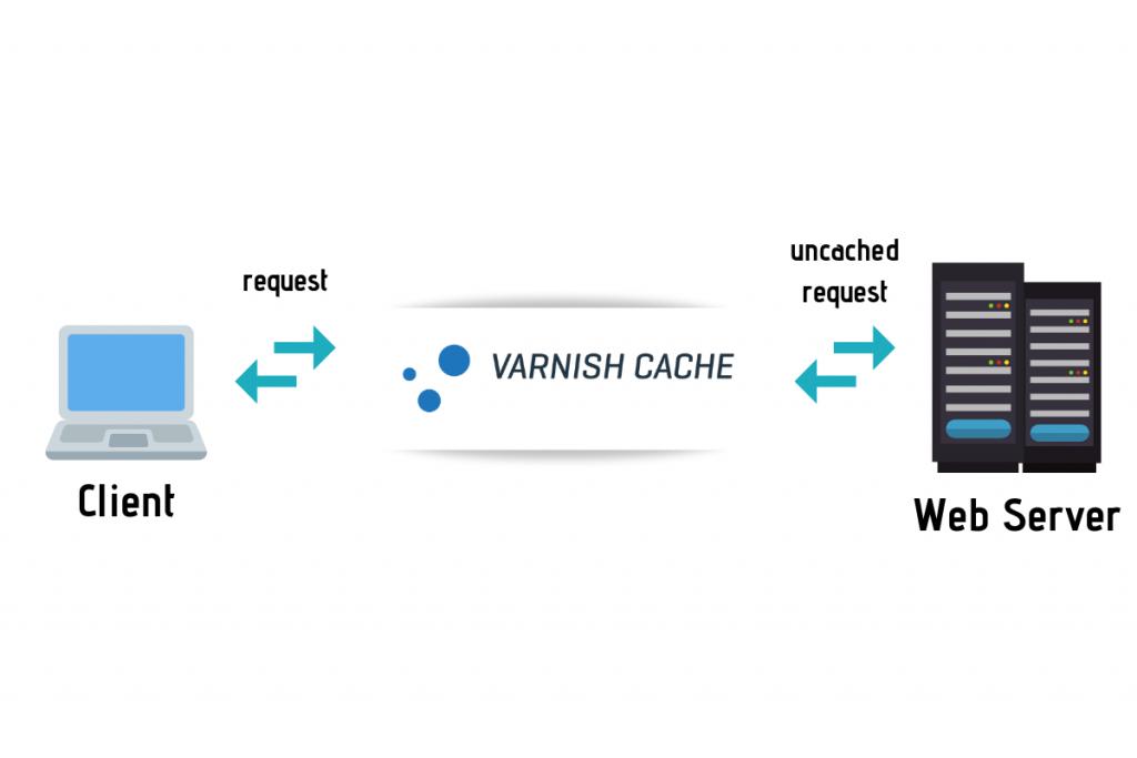 Varnish Cache. Как это работает и как использовать его на вашем сайте WordPress