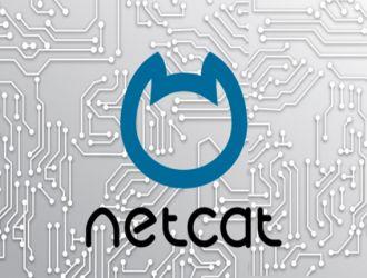 Команда Netcat (nc) в Linux с примерами