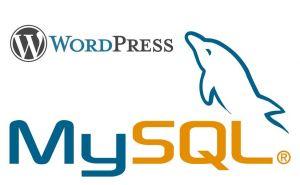 Поиск строк ключевых слов в постах WordPress