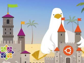 CentOS против Ubuntu. Выбор лучшей ОС для вашего сервера