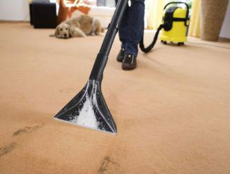 Как почистить ковролин от пятен в домашних условиях